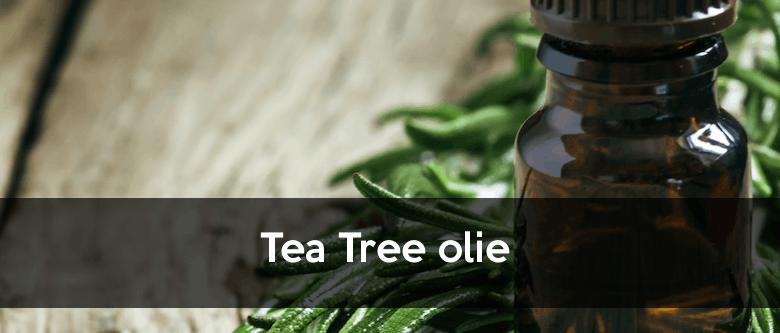 Tea tree olie mod fnat